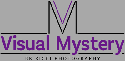 Visual Mystery